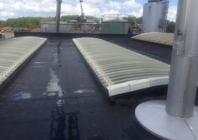 Dakwerken Jacobs: Platte daken
